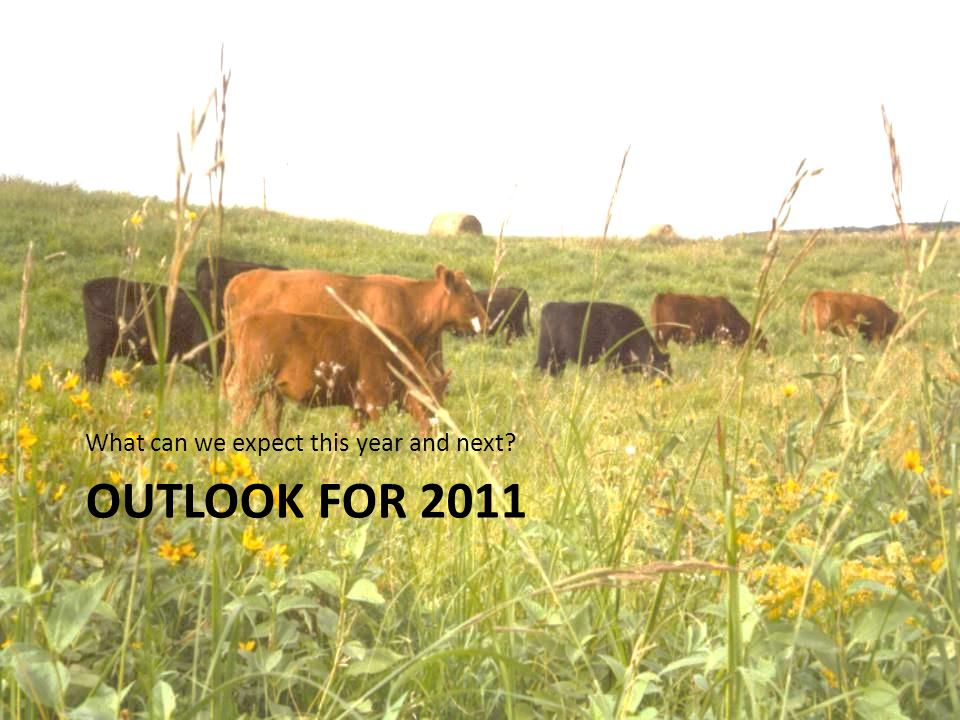 OUTLOOK FOR 2011 What can we expect this year and next