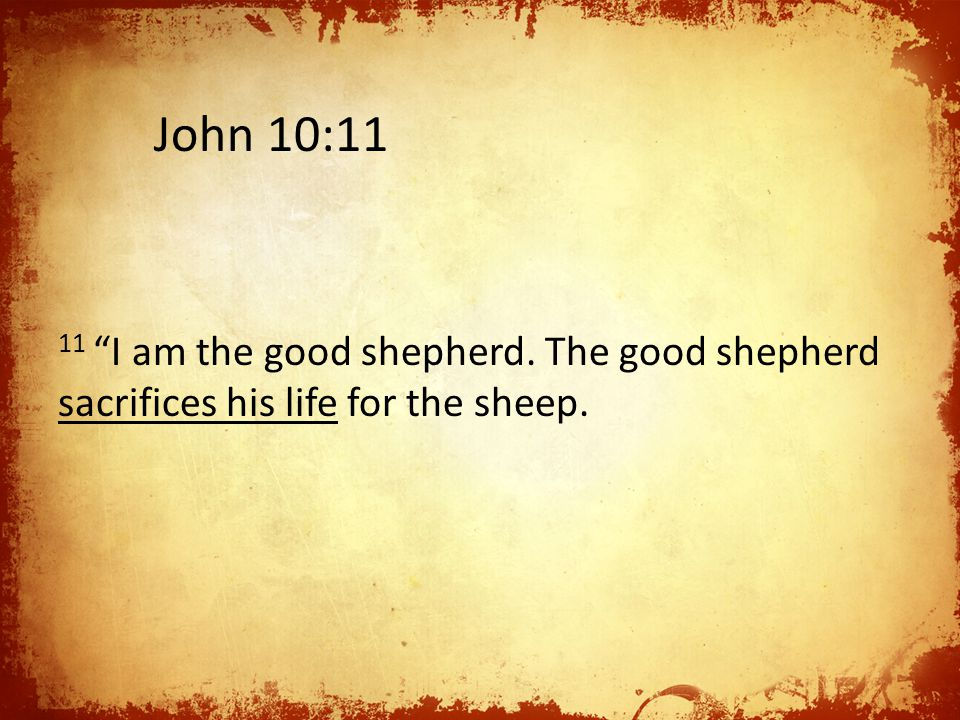 11 I am the good shepherd. The good shepherd sacrifices his life for the sheep. John 10:11