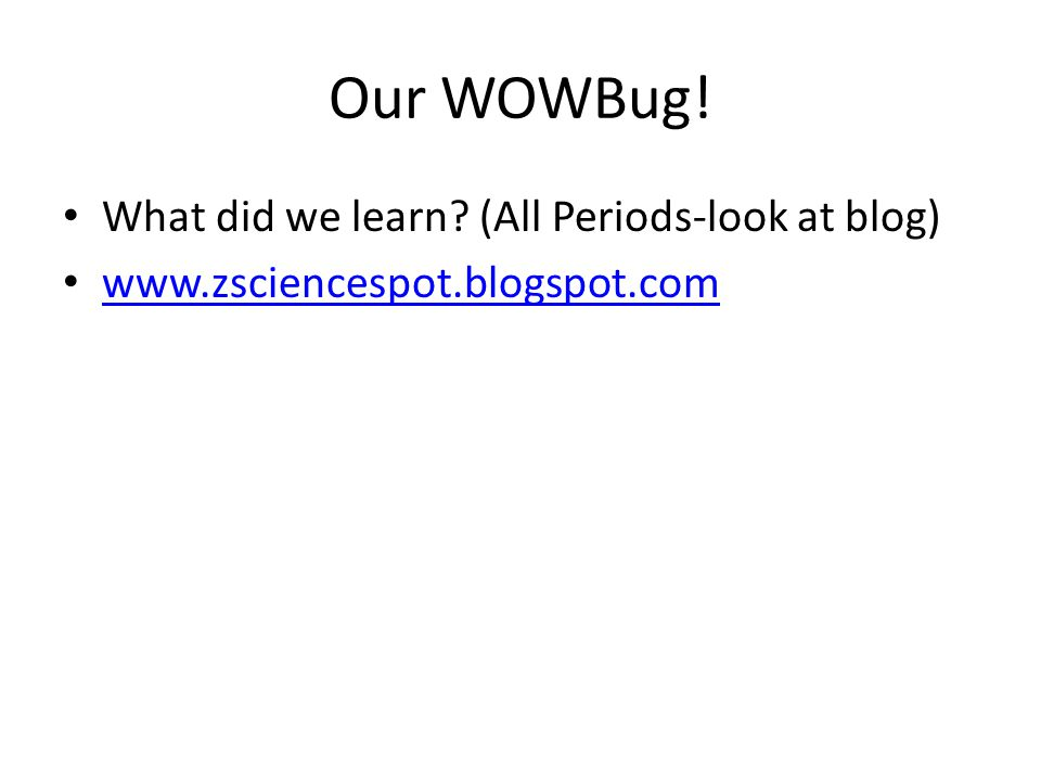 Our WOWBug! What did we learn (All Periods-look at blog) www.zsciencespot.blogspot.com