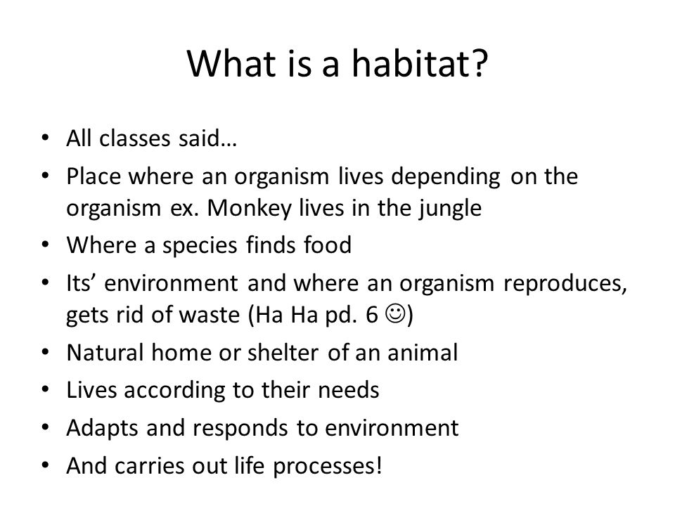 What is a habitat. All classes said… Place where an organism lives depending on the organism ex.