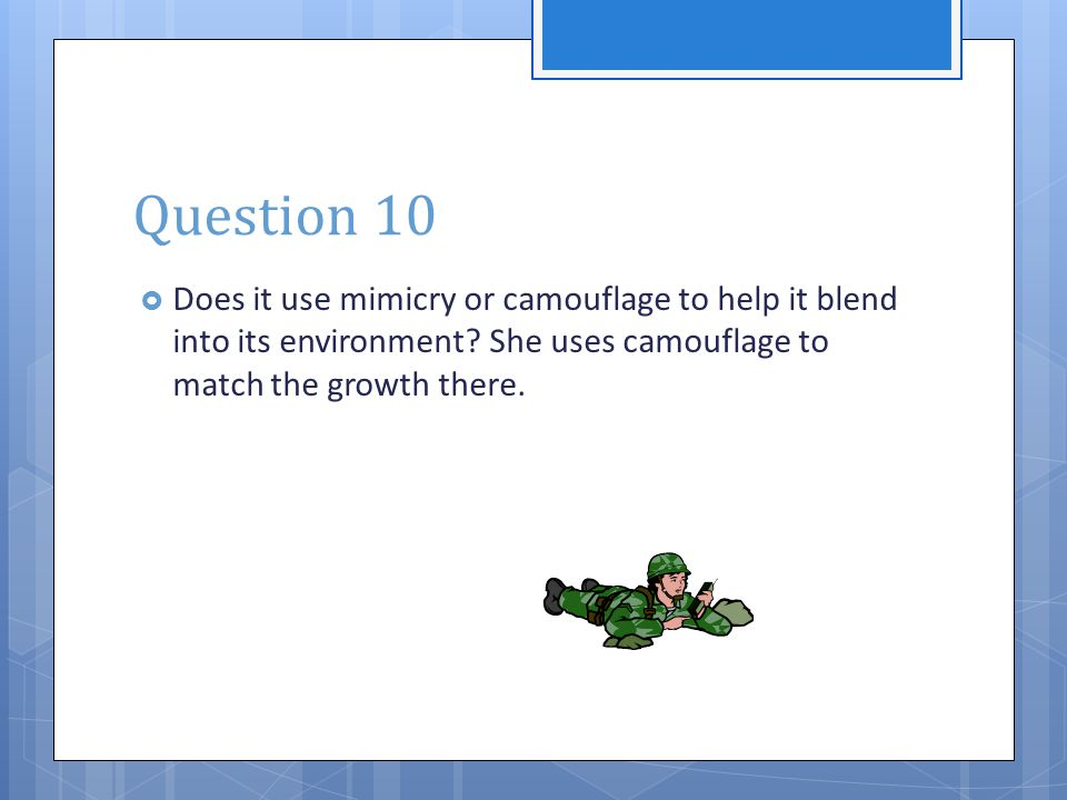 Question 10  Does it use mimicry or camouflage to help it blend into its environment? She uses camouflage to match the growth there.