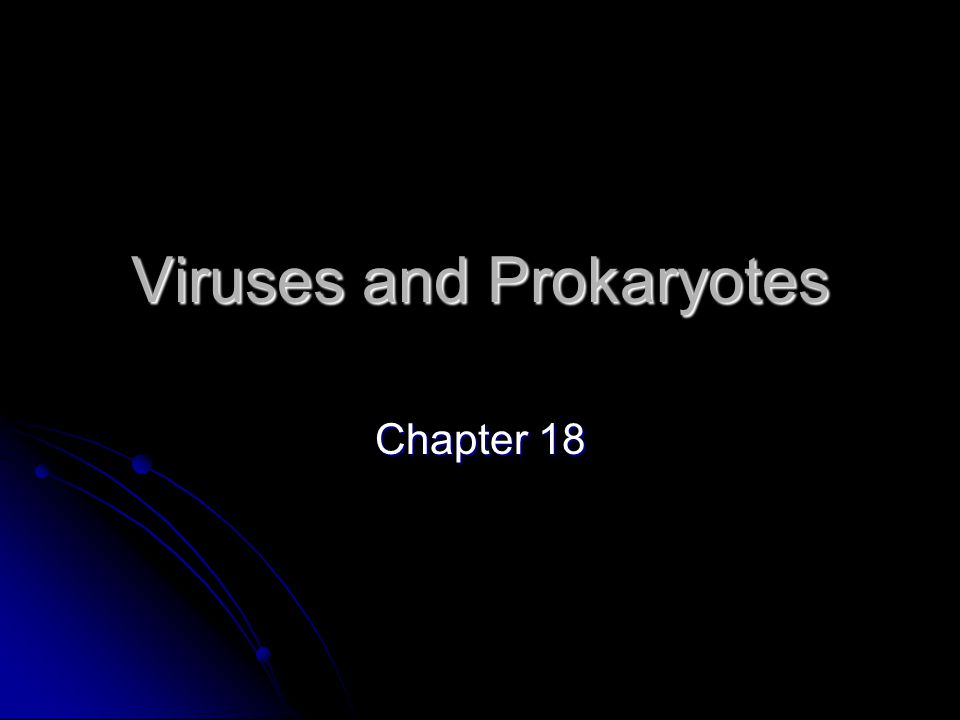 Studying Viruses and Prokaryotes Virus – an infectious agent made up of a core of nucleic acid and a protein coat.