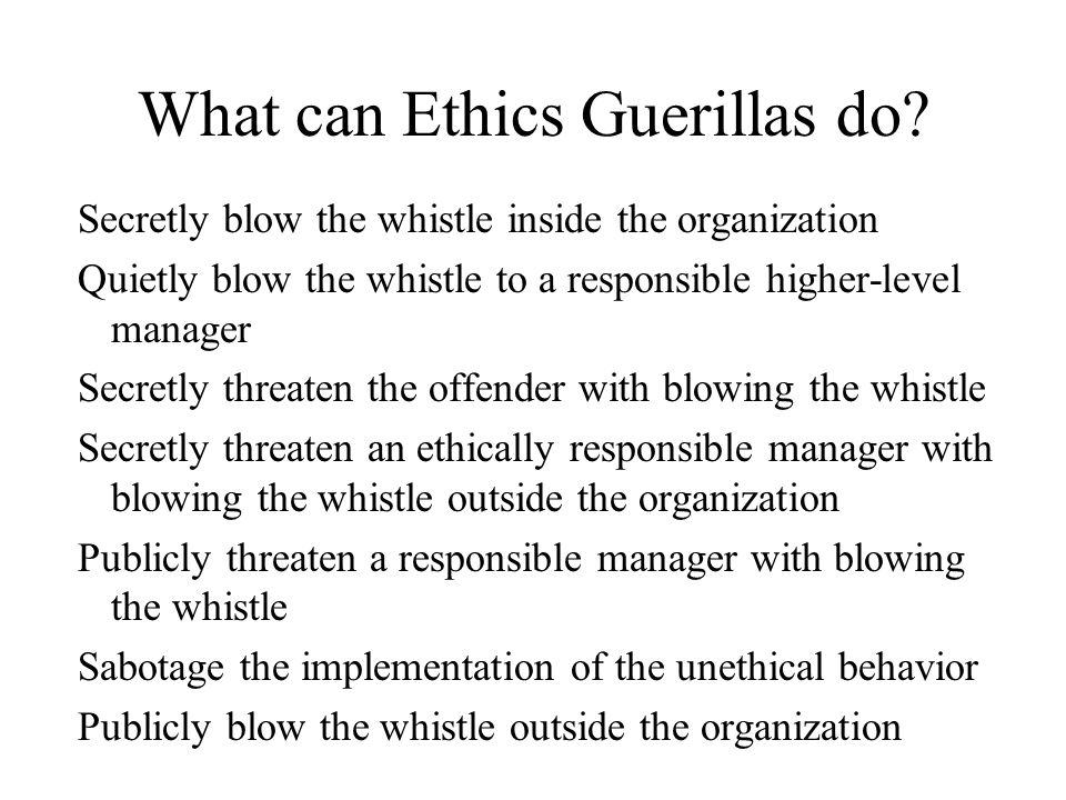 What can Ethics Guerillas do.