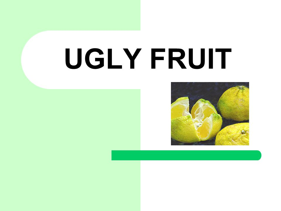 Ugly Fruit The ugly fruit was discovered growing wild in a pasture at the Trout Hall Estate in Jamaica in 1917.
