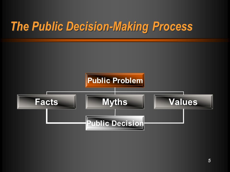 5 The Public Decision-Making Process