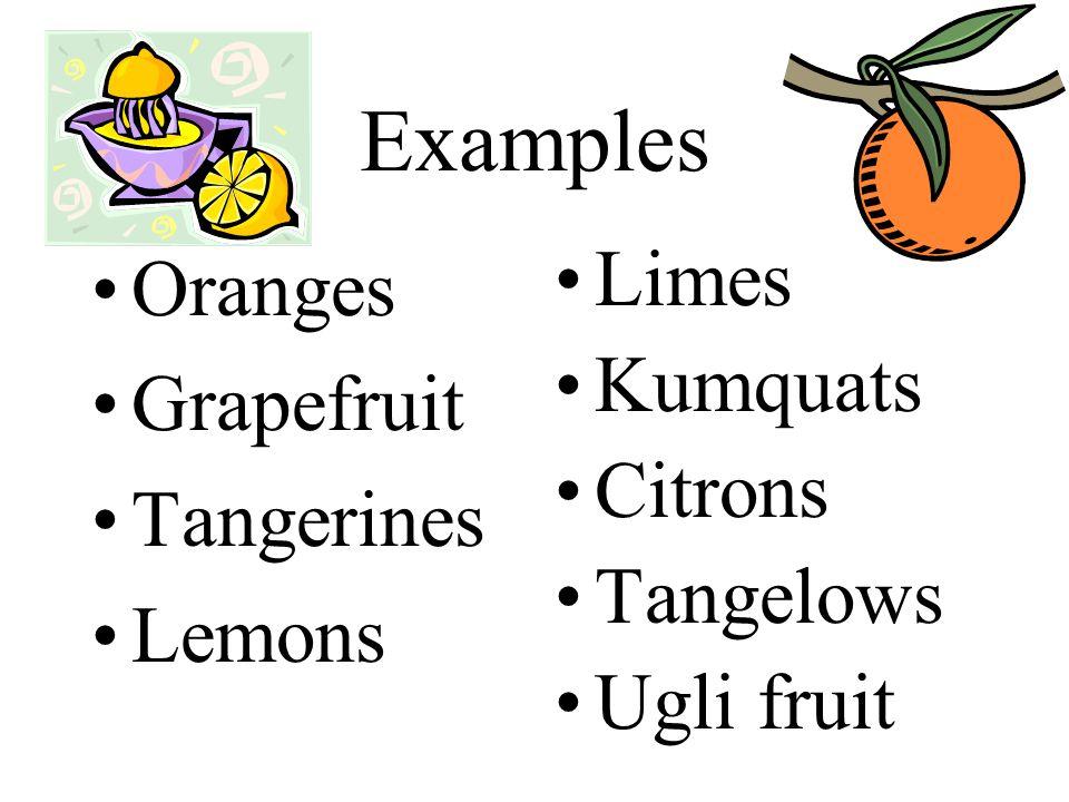 Examples Oranges Grapefruit Tangerines Lemons Limes Kumquats Citrons Tangelows Ugli fruit