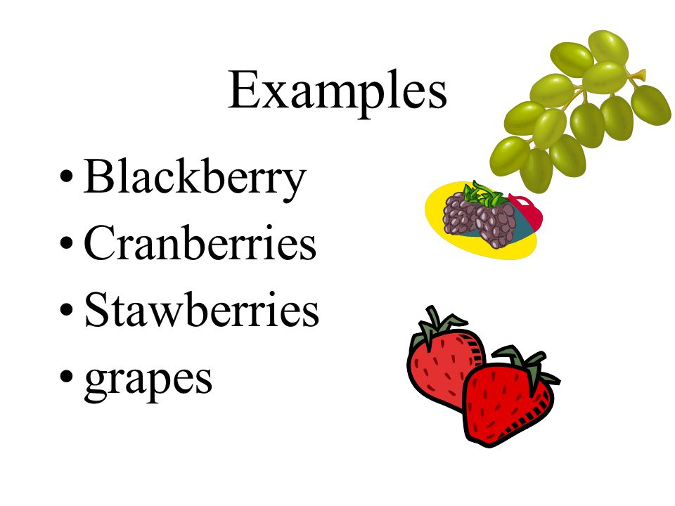 Examples Blackberry Cranberries Stawberries grapes