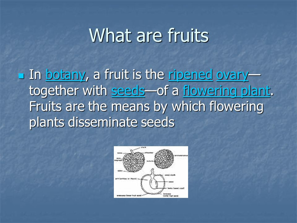 In cuisine, when discussing fruit as food, the term usually refers to those plant fruits that are sweet and fleshy, examples of which include plums, apples and oranges.