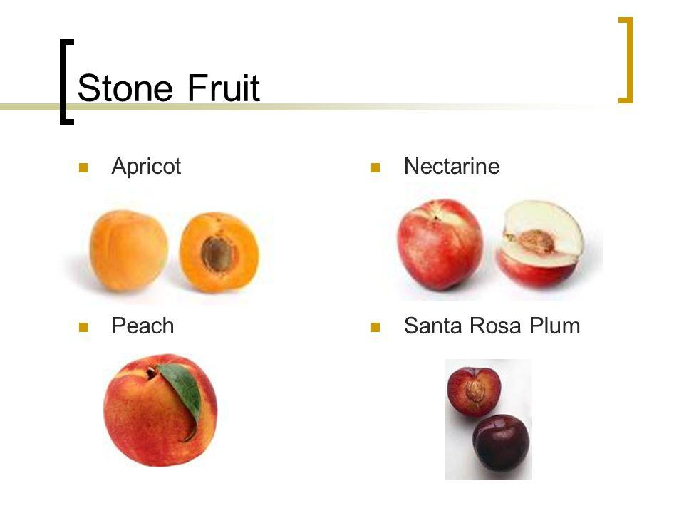 Stone Fruit Apricot Nectarine Peach Santa Rosa Plum