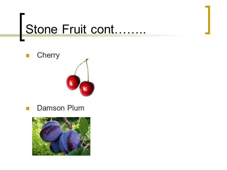 Stone Fruit cont…….. Cherry Damson Plum