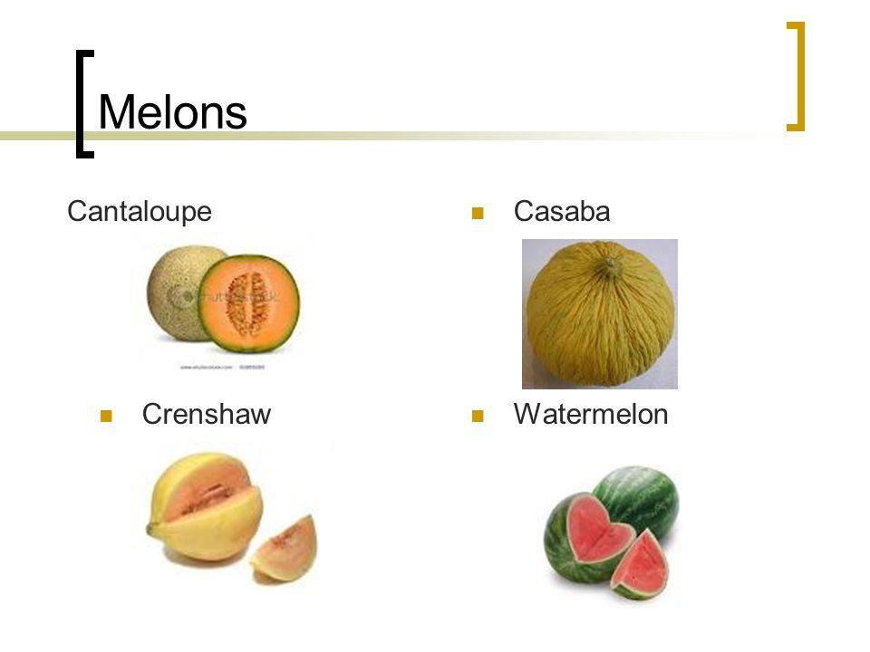 Melons Cantaloupe Casaba Crenshaw Watermelon