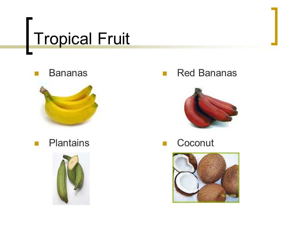 Tropical Fruit Bananas Red Bananas Plantains Coconut