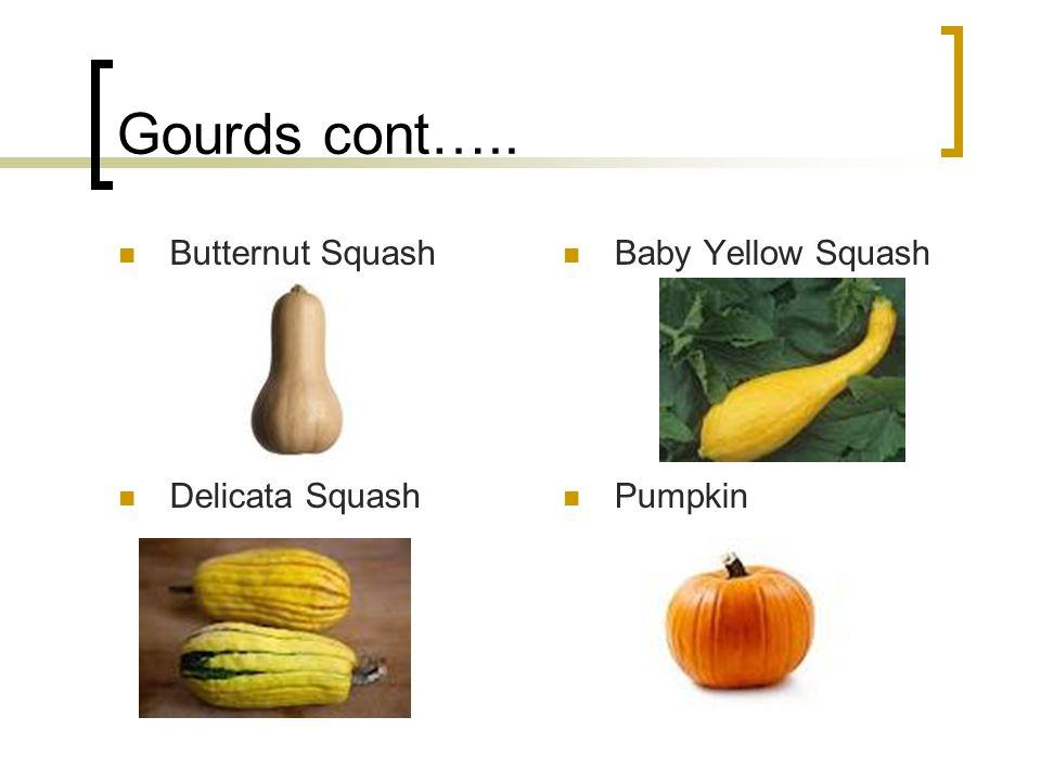 Gourds cont….. Butternut Squash Baby Yellow Squash Delicata Squash Pumpkin