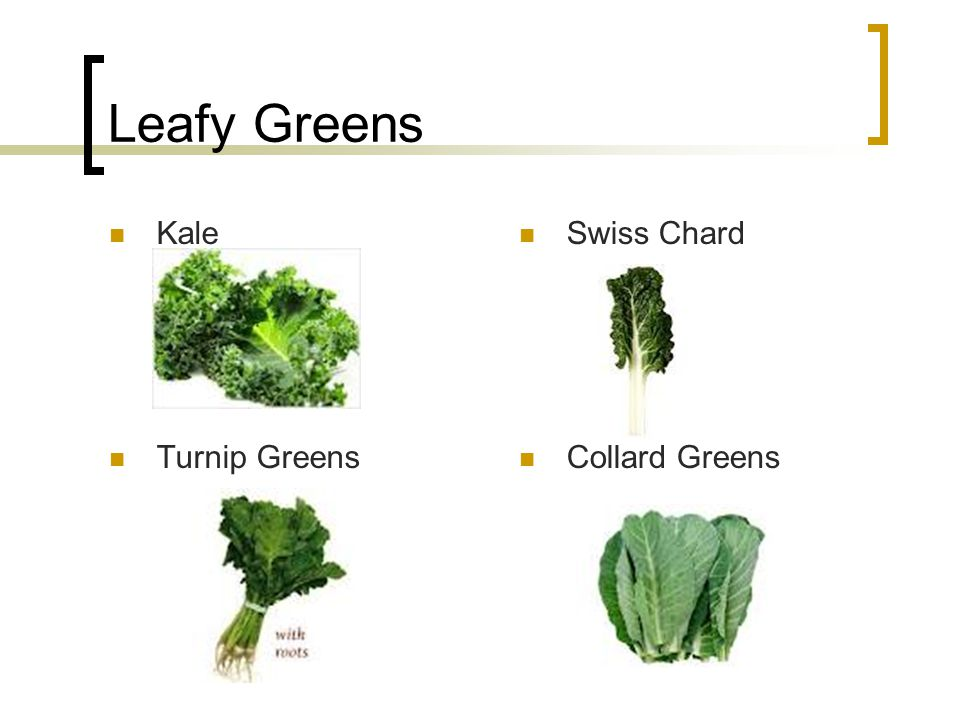 Leafy Greens Kale Swiss Chard Turnip Greens Collard Greens