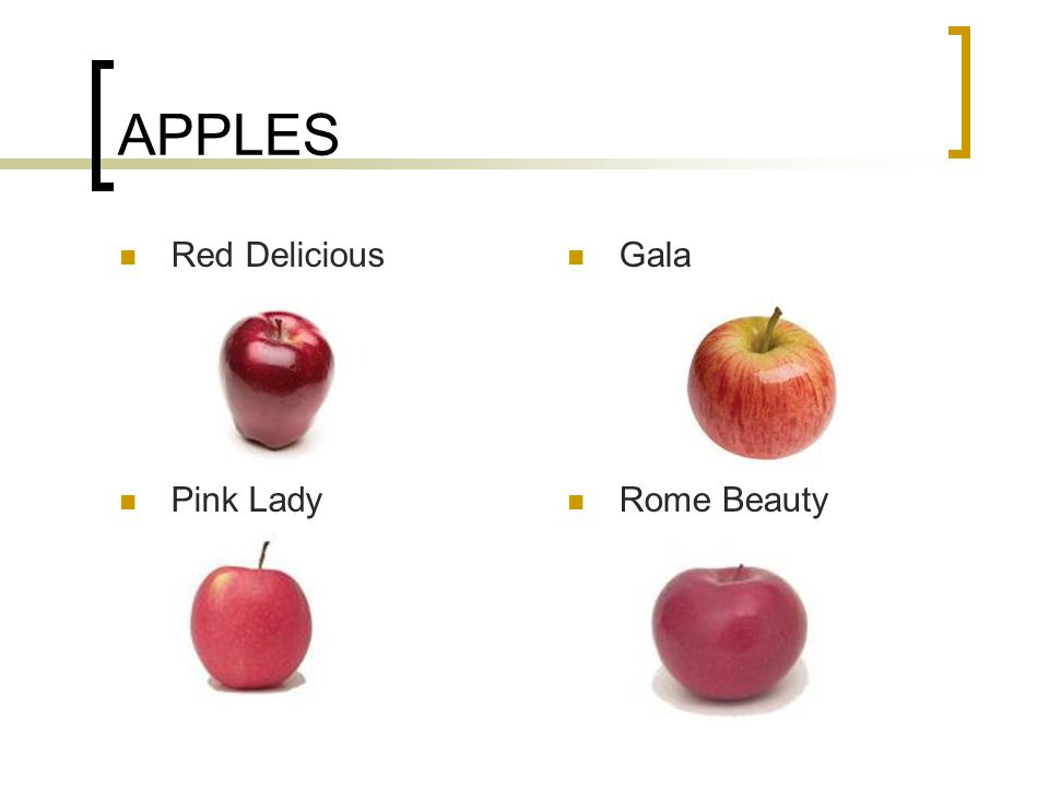 APPLES Red Delicious Gala Pink Lady Rome Beauty