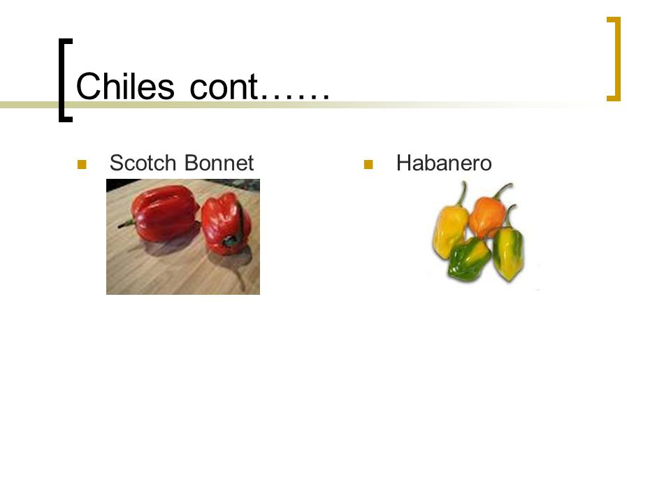 Chiles cont…… Scotch Bonnet Habanero