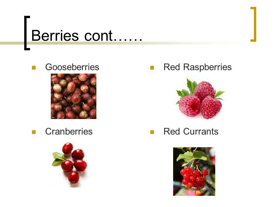 Berries cont…… Gooseberries Red Raspberries Cranberries Red Currants
