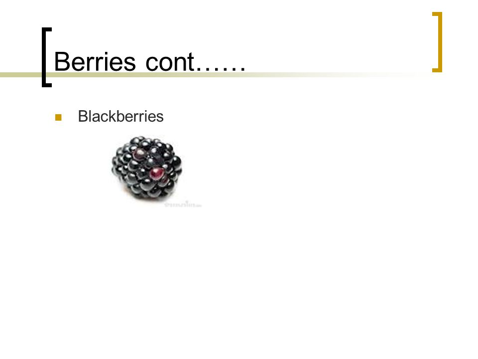 Berries cont…… Blackberries