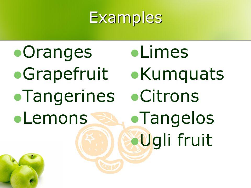 Examples Oranges Grapefruit Tangerines Lemons Limes Kumquats Citrons Tangelos Ugli fruit
