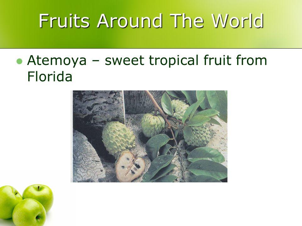 Fruits Around The World Atemoya – sweet tropical fruit from Florida