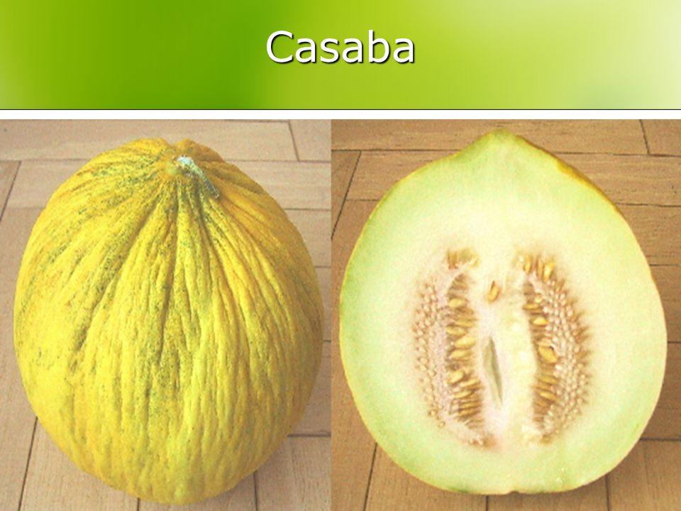 Casaba