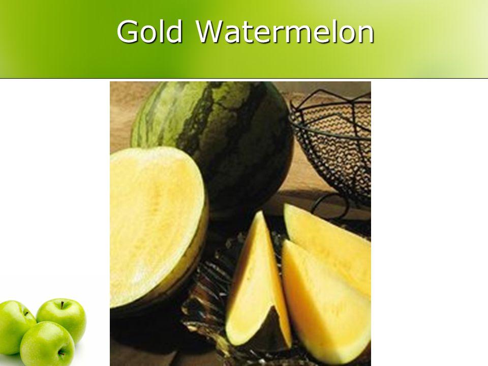 Gold Watermelon Gold Watermelon