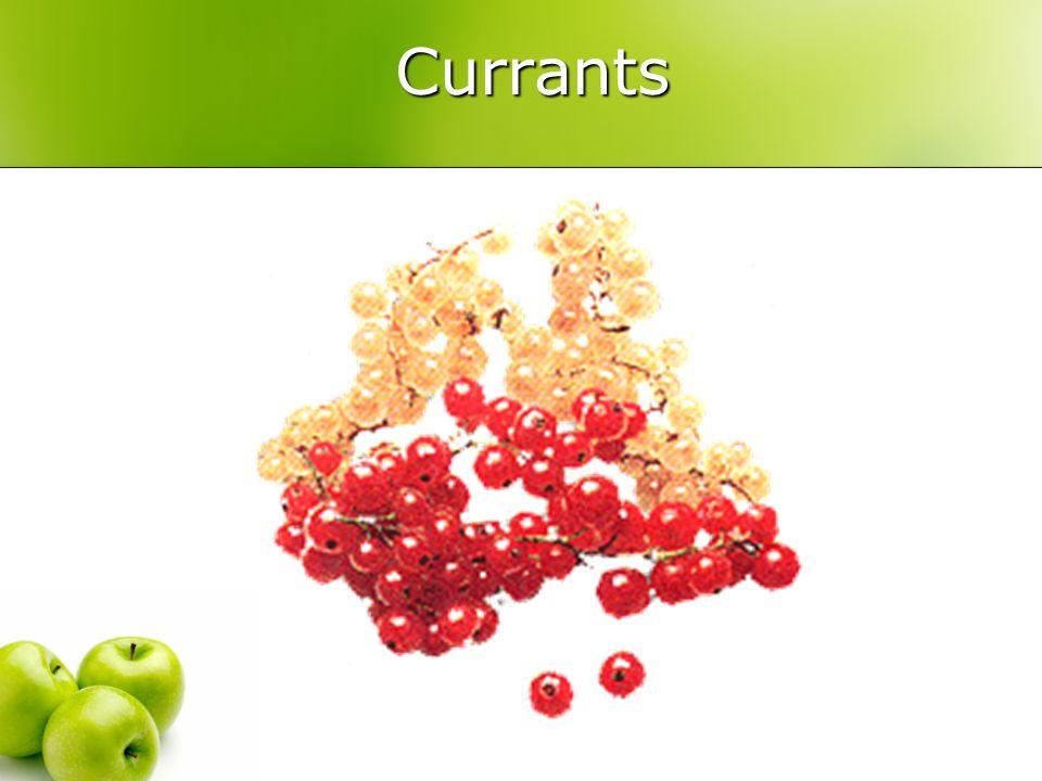 Currants Currants