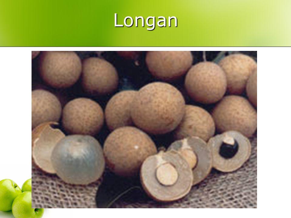Longan