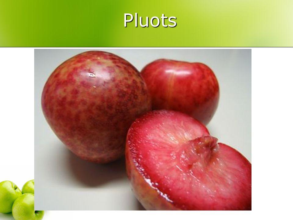 Pluots Pluots