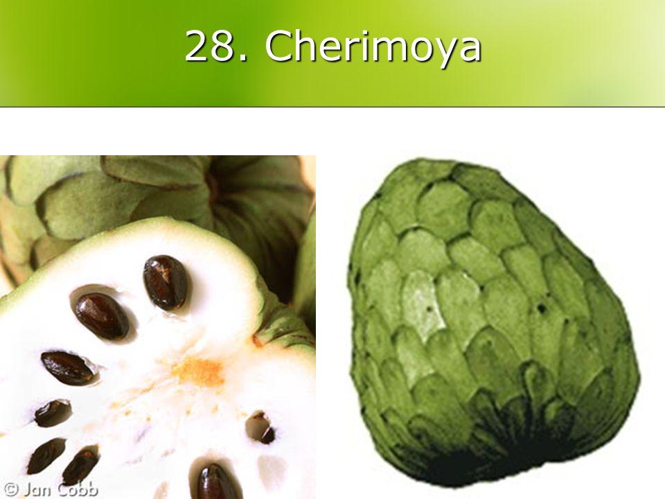 28. Cherimoya