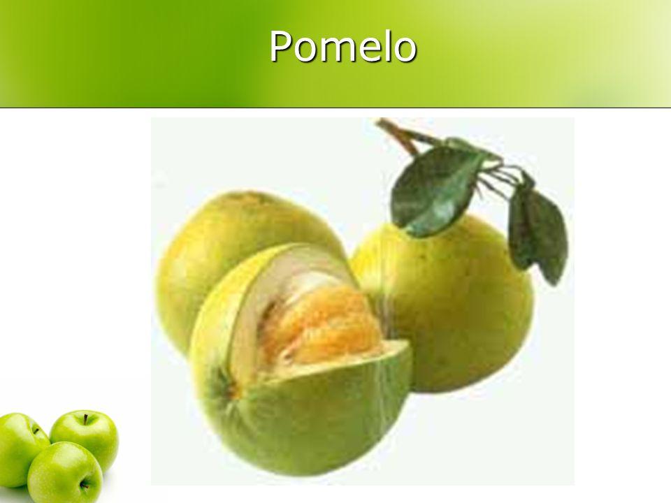Pomelo Pomelo
