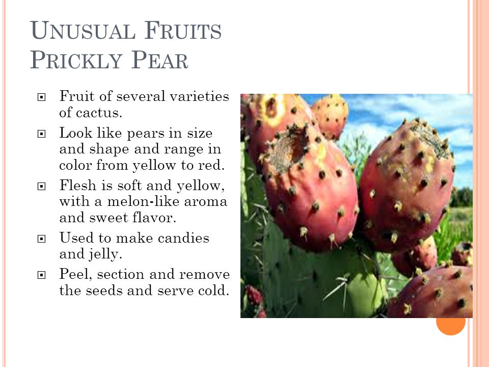 U NUSUAL F RUITS P RICKLY P EAR  Fruit of several varieties of cactus.