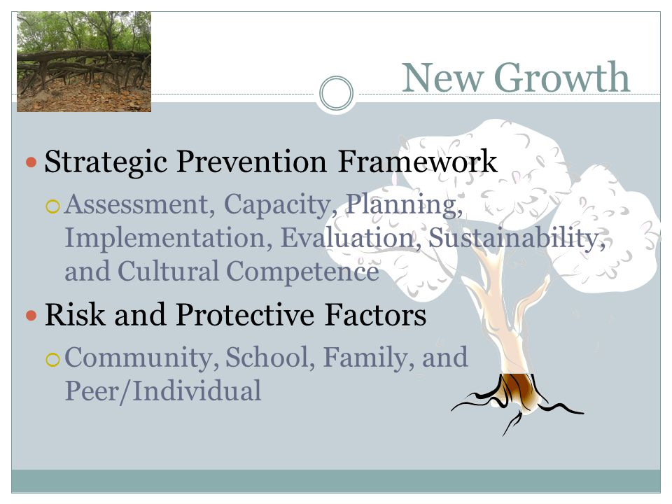 New Growth Strategic Prevention Framework  Assessment, Capacity, Planning, Implementation, Evaluation, Sustainability, and Cultural Competence Risk a