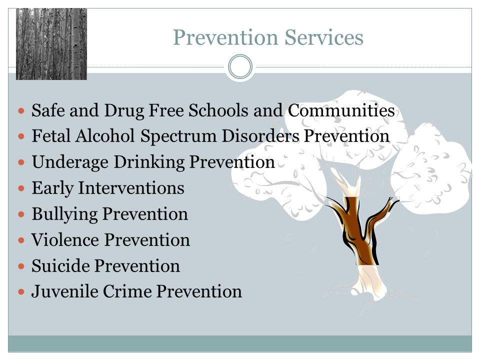 Prevention Services Safe and Drug Free Schools and Communities Fetal Alcohol Spectrum Disorders Prevention Underage Drinking Prevention Early Interven