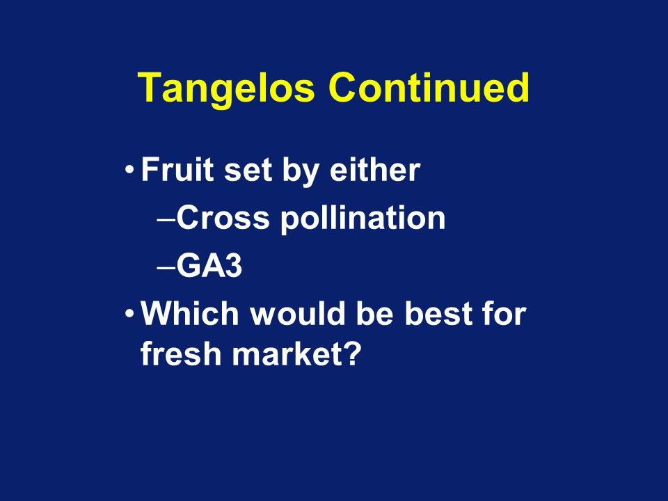 Tangelos Continued Fruit set by either –Cross pollination –GA3 Which would be best for fresh market?