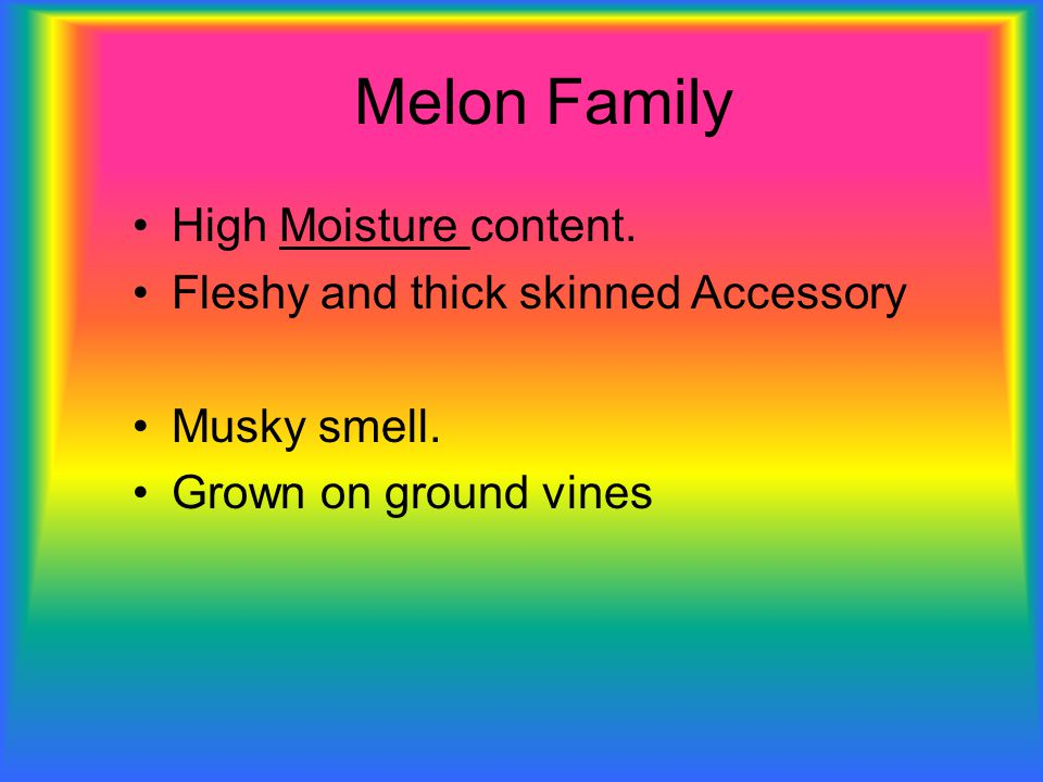 Melon Family High Moisture content. Fleshy and thick skinned Accessory Musky smell.