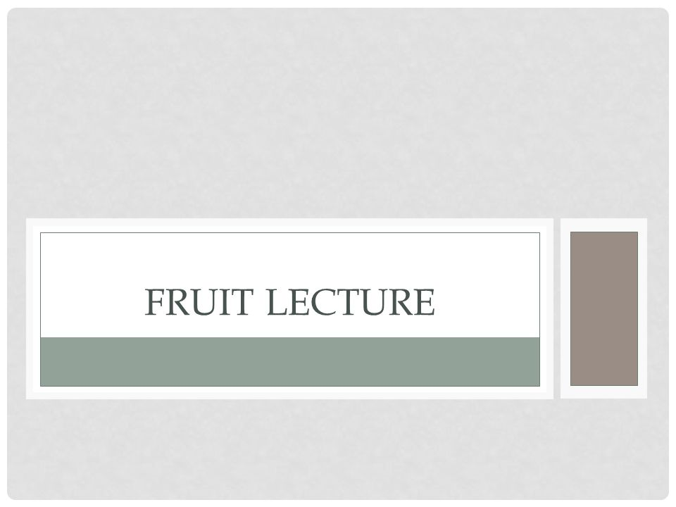 FRUIT LECTURE