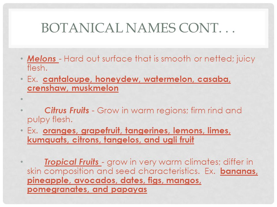 BOTANICAL NAMES CONT... Melons - Hard out surface that is smooth or netted; juicy flesh.