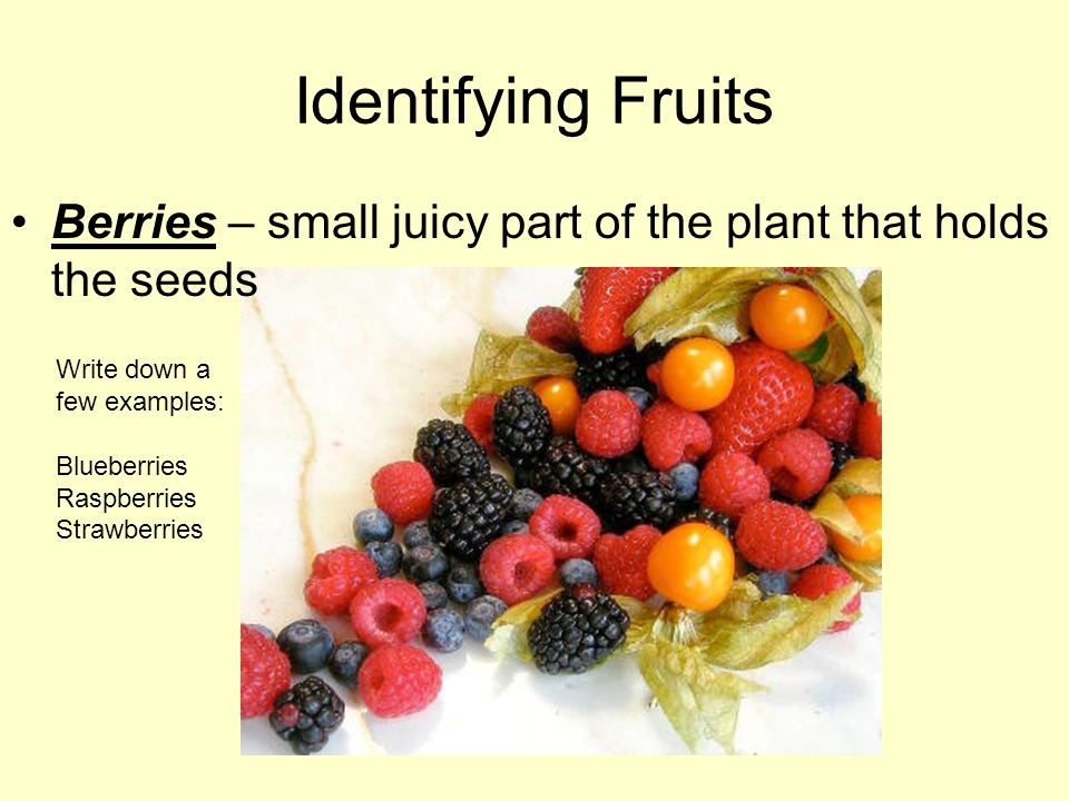 Identifying Fruits Berries – small juicy part of the plant that holds the seeds Write down a few examples: Blueberries Raspberries Strawberries