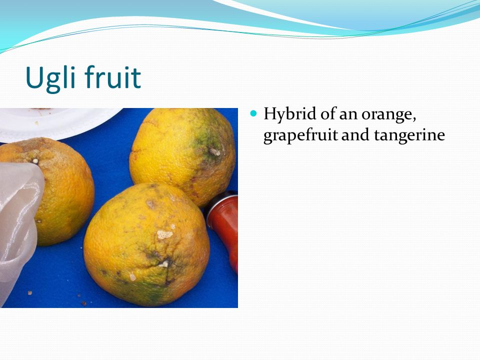 Ugli fruit Hybrid of an orange, grapefruit and tangerine