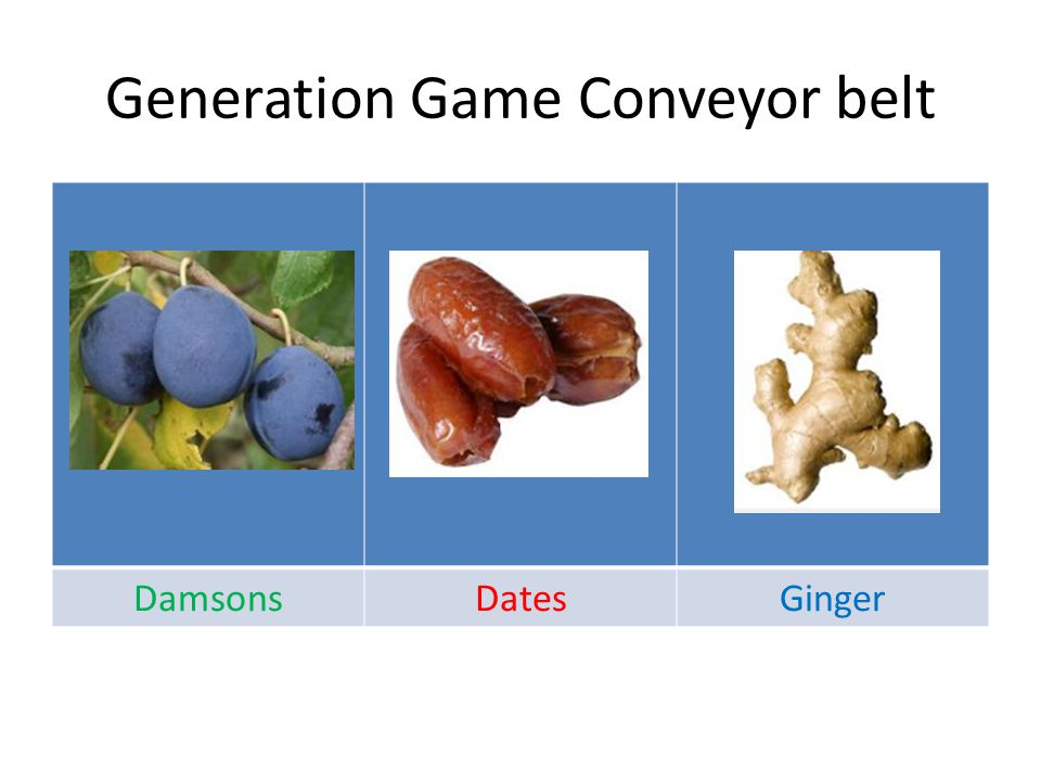 Generation Game Conveyor belt DamsonsDatesGinger