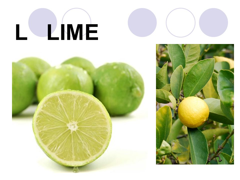 L LIME