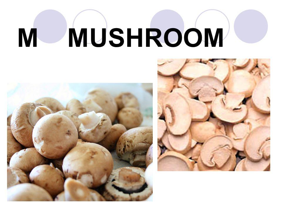 M MUSHROOM
