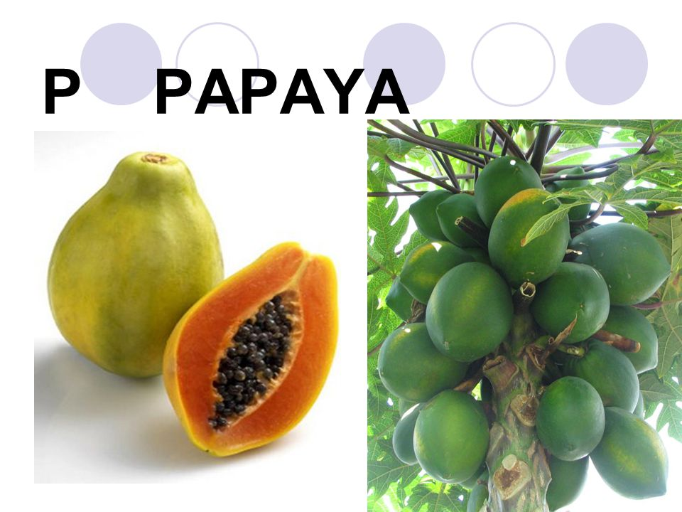 P PAPAYA