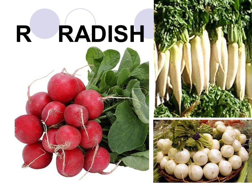 R RADISH