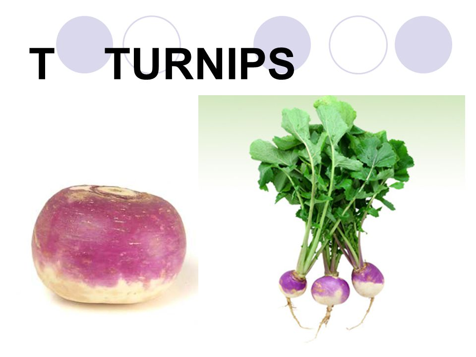 T TURNIPS