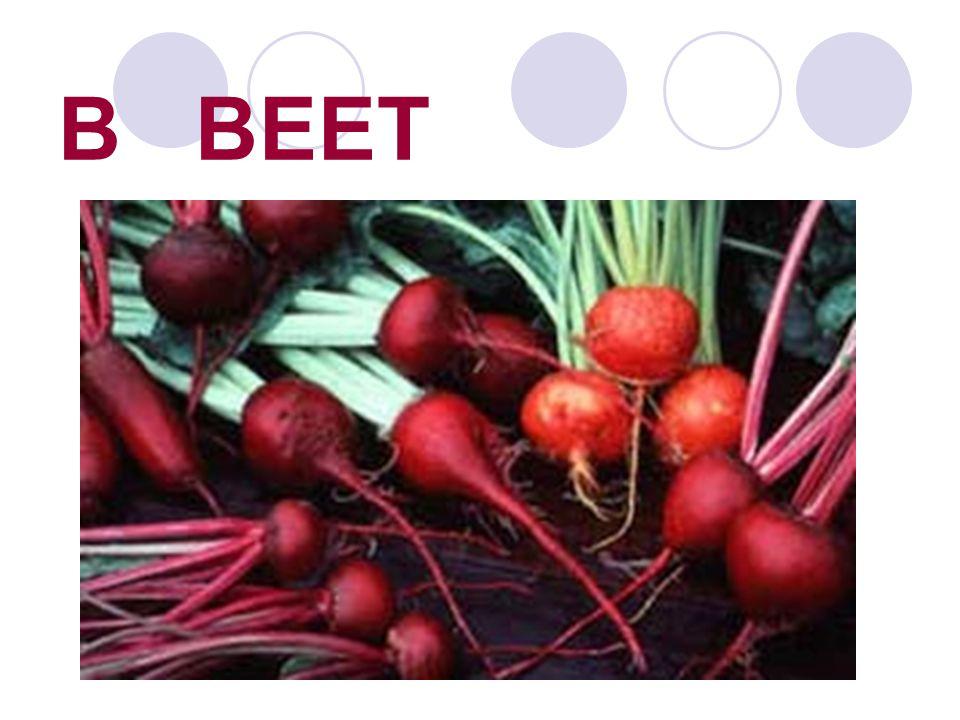 B BEET
