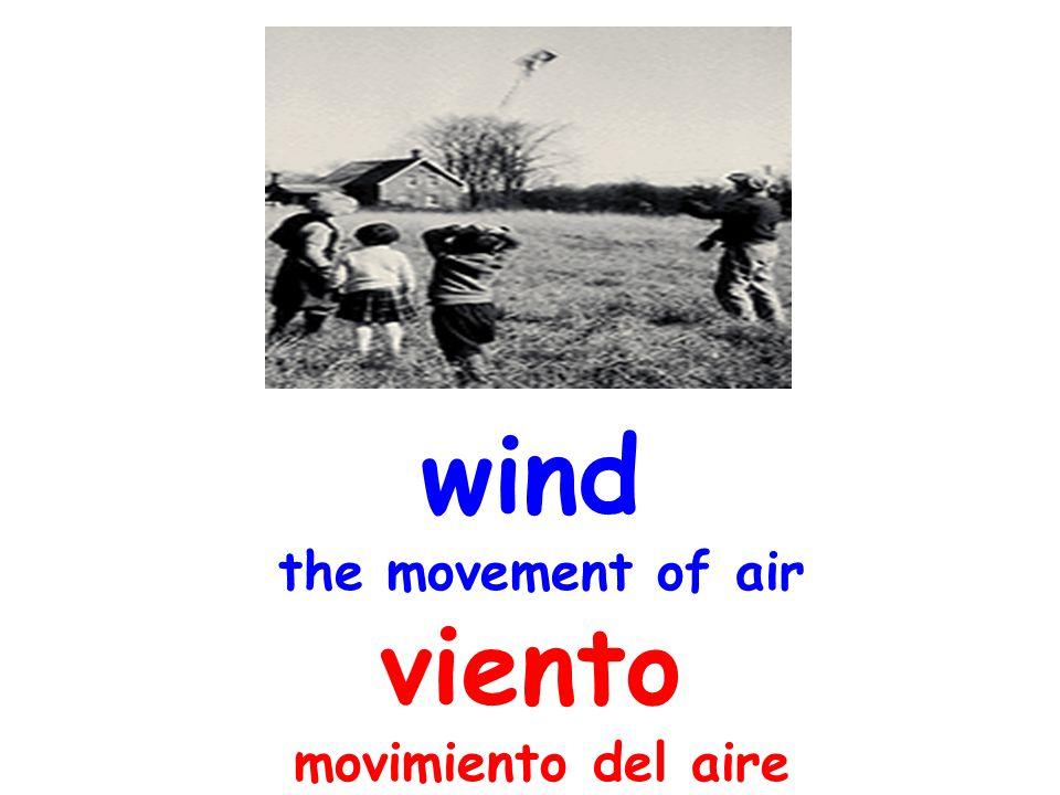 wind the movement of air viento movimiento del aire