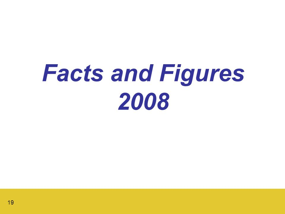 19 Facts and Figures 2008