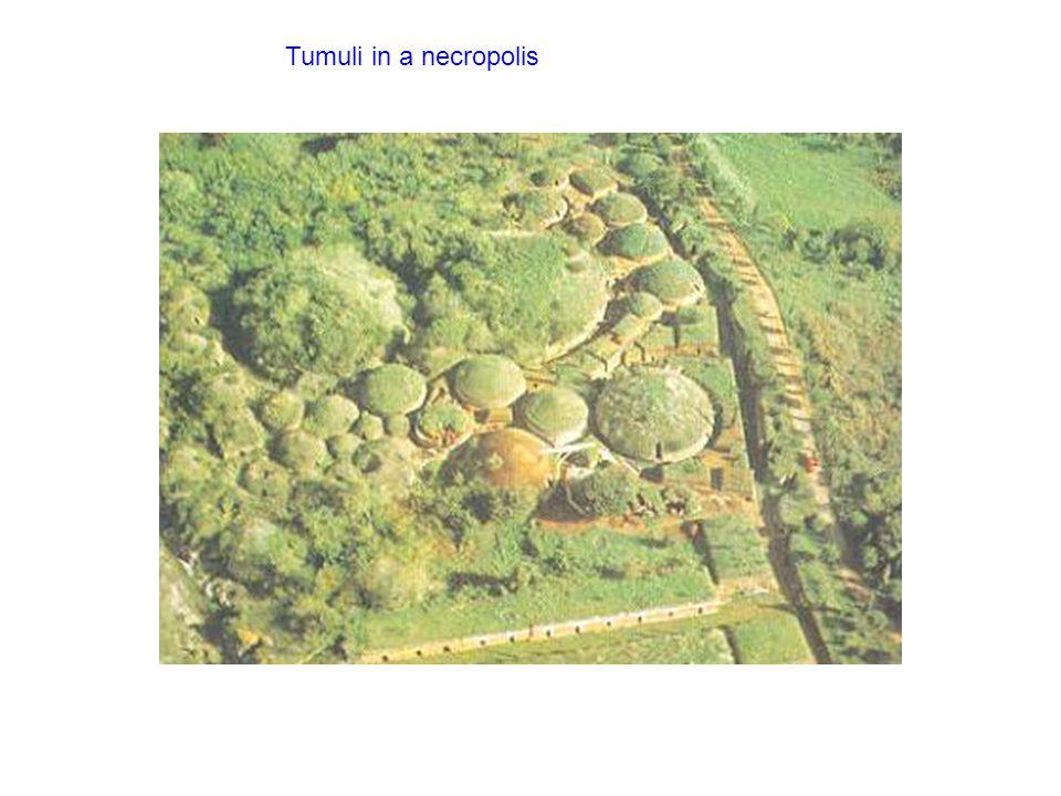 Tumuli in a necropolis